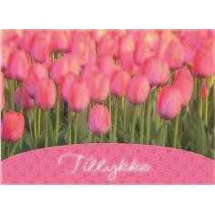 Image of   BC19 pink tulipaner